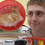 The Animatrix is Real: Hamster Powered Generator