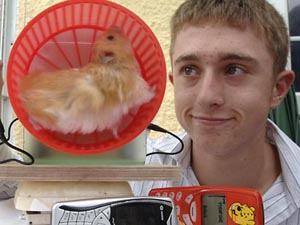hamster generator