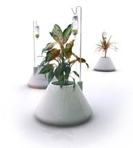 vitamin iv plant system