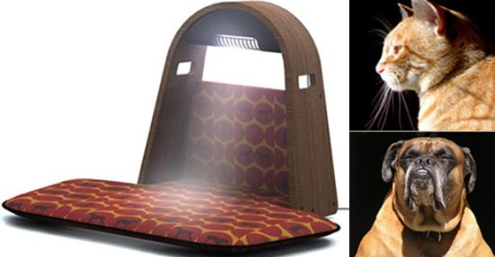 Pet tanning bed craziest gadgets for 85 degrees tanning salon