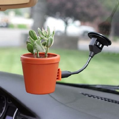 suction cup flowerpot Pinboard
