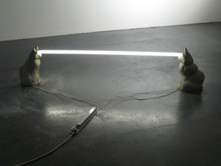 Laser Cats Staring Light