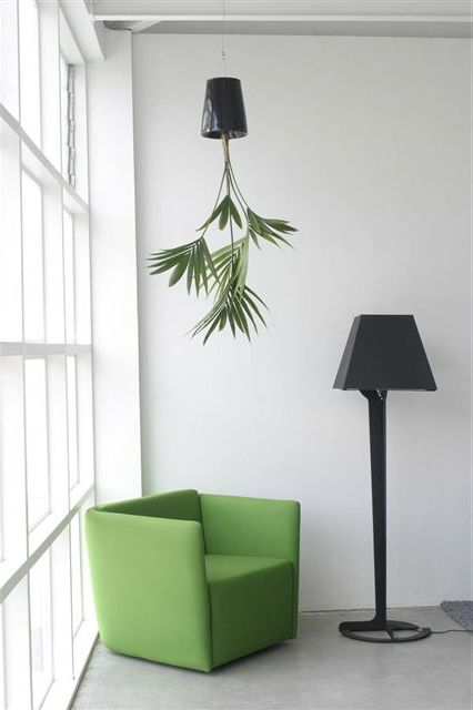Upside Down Planter Defies Gravity, Convention, Common Sense