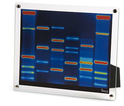 dna portrait Gift Ideas for People Who Have Everything
