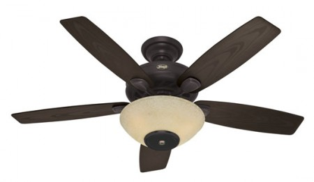 Ceiling Fan with Built in Speakers