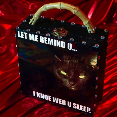 LOLCATS Lol-cat-purse-450x450
