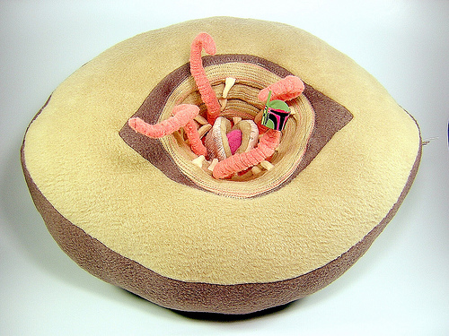 Sarlacc Pit Monster Pillow- Greatest Star Wars Craft Ever
