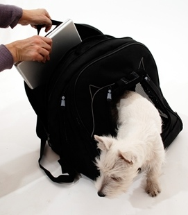 dog laptop bag2