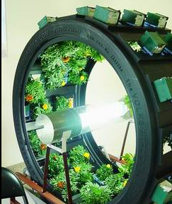 Rotating Circular Indoor Garden