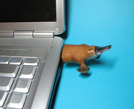 duck billed platypus usb drive Pinboard