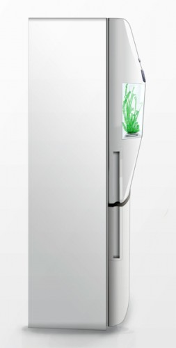 Grow Herbs Right on Your Fridge