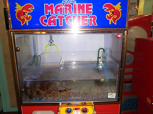 lobster claw game 10 Most Unusual Vending Machines