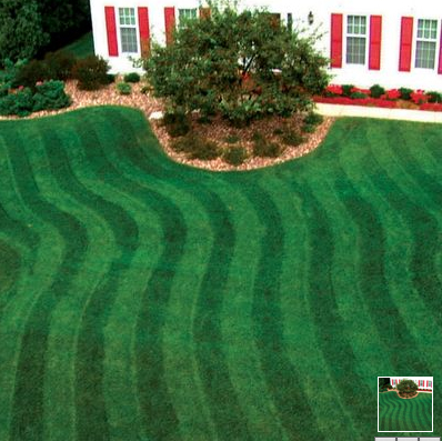 striped grass Get a Big League Lawn with a Lawn Roller