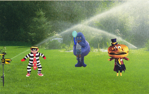 grimace sprinkler Scarecrow Motion Activated Sprinkler Keeps Pests Away, Internet Meme Alive