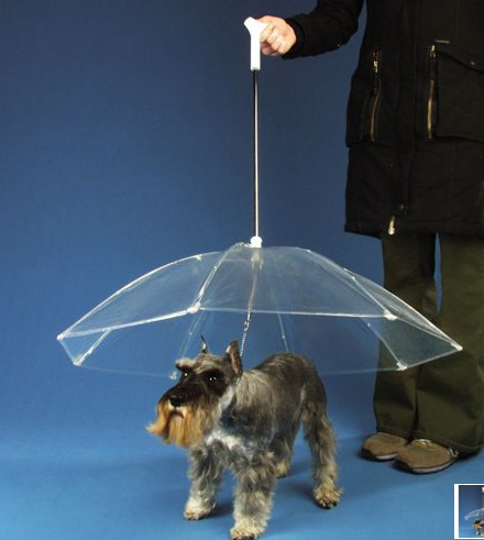 The Dogbrella Keeps Your Dog Dry