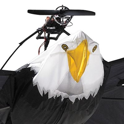 rc bald eagle closeup 10 Foot Wingspan Remote Controlled Bald Eagle