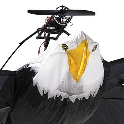 rc bald eagle closeup 10 Foot Wingspan Remote Controlled Bald Eagle
