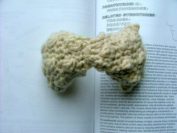 crocheted thyroid Crocheted Body Parts