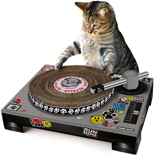 DJ Cat Scratch Turntable Probably Sounds Better than Skrillex