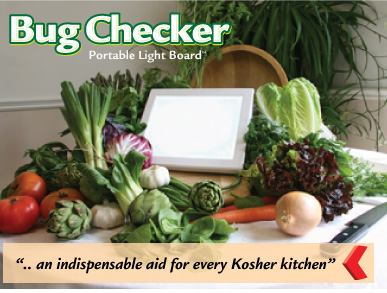 bug check light board Bug Checker Kitchen Light Board
