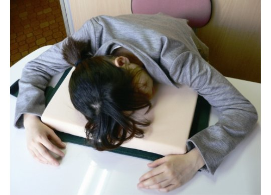 dictionary pillow nap Dictionary Desk Pillow Folds Up and Looks Like a Book