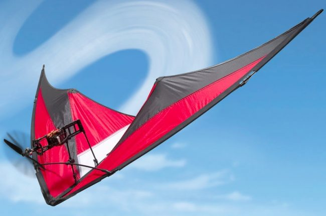 motorized stunt kite 650x430 Motorized Stunt Kite