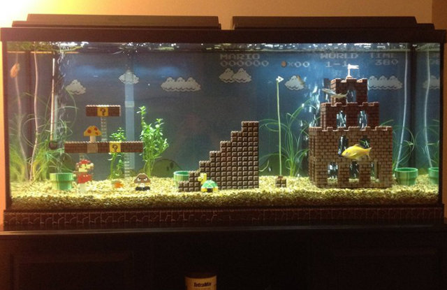 &gt; More Pics: Cool Super Mario Bros Aquarium - Photo posted in BX GameSpot | Sign in and leave a comment below!