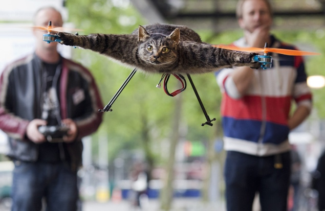 cat helicopter1 Man Turns Dead Stuffed Cat Into a Helicopter (WTF?)