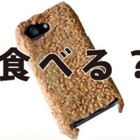 edible iphone case