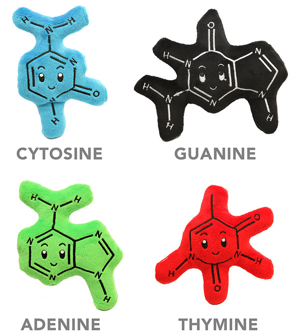 Plush DNA Molecules