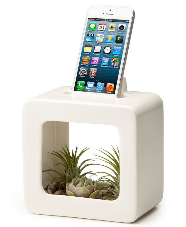 Bloom Box Planter and iPhone Dock