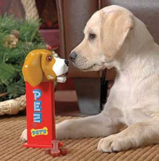 Giant Pez Dog Treat Dispenser