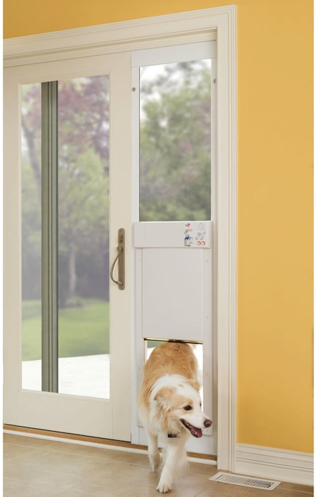 sliding door pet door Pinboard