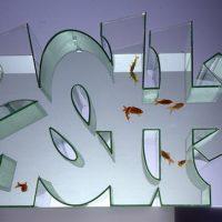 graffiti fishtank
