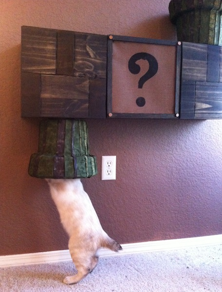 super mario bros cat