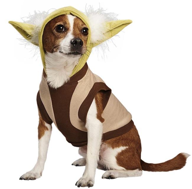 yoda dog hoodie