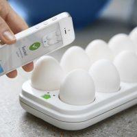 smart egg tray