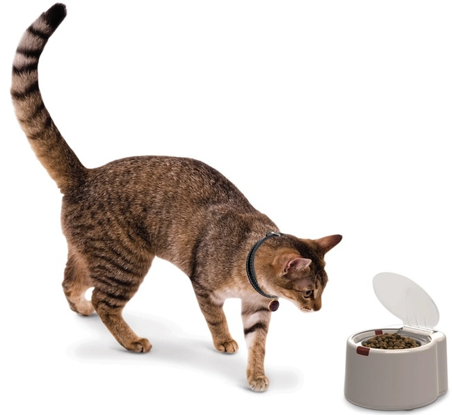 microchip activated pet feeder