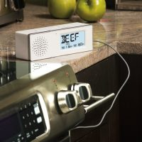 speaker thermometer