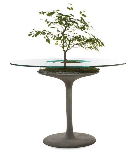 opiary table with plant