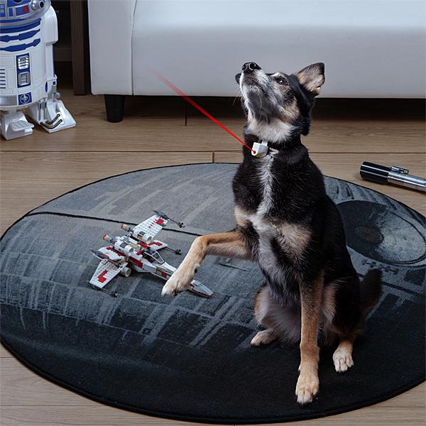 laser dog collar