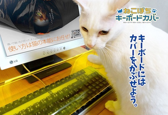 anti cat keyboard