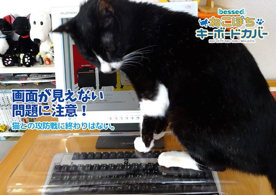 cat protection keyboard